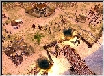 Wioska, Empire Earth 2